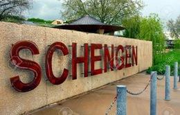EC cáo buộc Bỉ vi phạm Hiệp ước Schengen