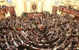 Quốc hội Ai Cập họp phiên đầu tiên sau 3 năm