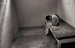 Ai Cập: Bé trai 4 tuổi bị... kết án chung thân vì nhầm tên