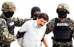 """Vì sao trùm ma túy Mexico """"El Chapo"""" Guzman bị bắt?"""