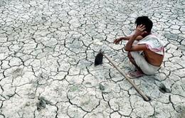 El Nino ảnh hưởng tiêu cực tới nhiều nước trên thế giới