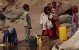 Ethiopia: Đi bộ 3 giờ đồng hồ mới lấy được nước
