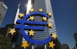 Bosnia Herzegovina nộp đơn gia nhập EU