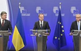 EU hỗ trợ Ukraine thúc đẩy cải cách