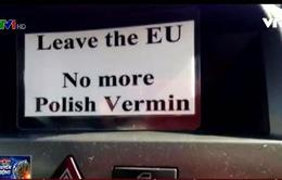Lo ngại tình trạng kì thị người nhập cư tại Anh hậu Brexit