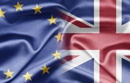"""Nước Anh """"lục đục"""" nội bộ trước quyết định đi hay ở lại EU"""