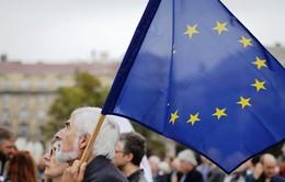 EU cần đánh thuế hàng nhập khẩu từ Mỹ nếu Washington rút khỏi Thỏa thuận Paris