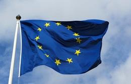 Khối Schengen hiển hiện nguy cơ tan rã
