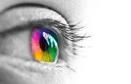Microsoft ra mắt ứng dụng hỗ trợ người mù màu trên iOS