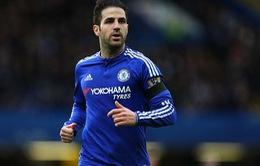"""CĐV Chelsea """"van nài"""" Fabregas ở lại"""