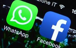EU cáo buộc Facebook cung cấp thông tin sai lệch trong thương vụ mua Whatsapp