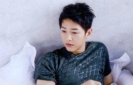 """Song Joong Ki bị công ty Trung Quốc """"hắt hủi"""""""