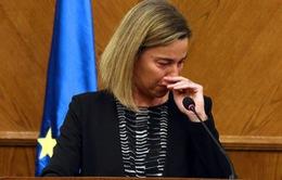 Nữ quan chức cấp cao EU khóc nấc khi nói về vụ khủng bố ở Bỉ