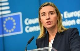 EU không ủng hộ lệnh trừng phạt mới chống Nga và Syria