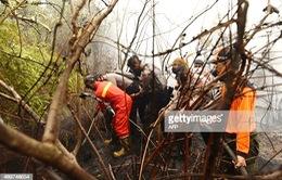"""Cuộc chiến đấu cam go với """"giặc"""" lửa tại Indonesia"""