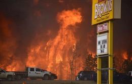 Canada: Sơ tán công nhân do cháy rừng lan tới mỏ dầu cát