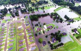 Lũ lụt lịch sử tại Louisiana (Mỹ) ảnh hưởng hàng chục nghìn người