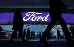 Ford thu hồi gần 400.000 xe Ford Rangers do lỗi túi khí