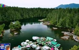 Freedom Cave - Đảo thiên đường nhân tạo ở đất nước Canada