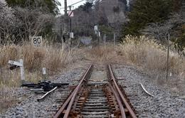 Thị trấn Naraha khó khôi phục sau thảm họa hạt nhân Fukushima 2011