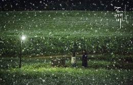 """Phim về """"yêu tinh"""" Gong Yoo tăng lượt xem chóng mặt"""
