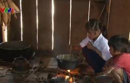 Hỗ trợ gạo cho học sinh vùng sâu, vùng xa mùa giáp hạt