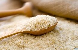 Cận cảnh quy trình sản xuất loại gạo nổi tiếng nhất Nhật Bản