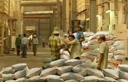 Xuất khẩu gạo chính ngạch sang Trung Quốc: Cơ hội và thách thức