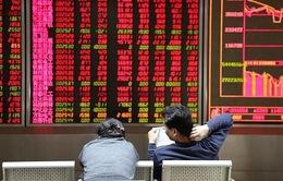 Doanh nghiệp Trung Quốc tìm kiếm cơ hội đầu tư tại Việt Nam