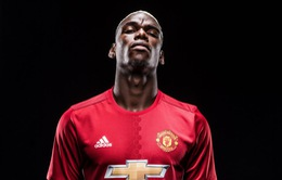 Pogba sẽ là trái tim của Man Utd trong 10 năm và hơn thế nữa