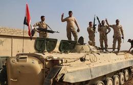 Quân đội Iraq tái chiếm thành phố cổ Nimrud từ tay IS
