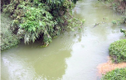 Bình Thuận: Lật ghe chở người đi đám cưới, 2 người thiệt mạng
