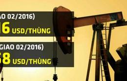 Phiên phục hồi mong manh trên thị trường dầu châu Á