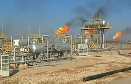 Giá dầu giảm có thể gây thiệt hại cho các nền kinh tế mới nổi
