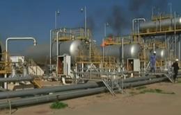 Saudi Arabia có thể cắt giảm 5% sản lượng dầu khai thác