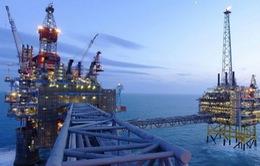 Giá dầu thô trên thị trường châu Á khởi sắc