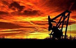 Giá dầu Mỹ xuống dưới 40 USD/thùng lần đầu tiên trong 4 tháng qua