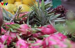 """Lần đầu tiên xuất khẩu rau quả """"vượt mặt"""" gạo: Lạc quan nhưng nhiều nỗi lo"""