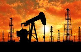 Giá dầu giảm xuống mức thấp nhất trong 3 tháng qua