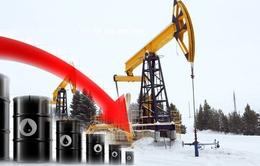 Giá dầu xuống mức thấp nhất trong vòng hơn 12 năm