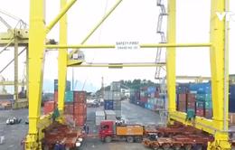 Cảng Tiên Sa đưa vào vận hành giàn cẩu container siêu trọng thứ 3