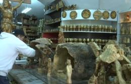 Các cửa hàng Giáng sinh Bethlehem trước thách thức từ hàng nhập khẩu