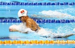 Giải bơi Arena Pro Swim Series: Ánh Viên tiếp tục giành huy chương