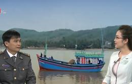 Gia tăng số vụ ngư dân Việt Nam vi phạm vùng biển quốc tế