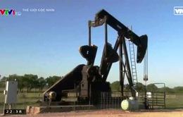 Câu chuyện giếng dầu gia đình Mỹ thời mất giá
