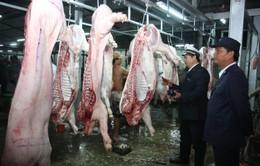 Kon Tum: 100% cơ sở, điểm giết mổ gia súc không có giấy phép hoạt động