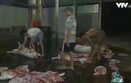 TP.HCM chấm dứt hoạt động lò giết mổ thủ công trong năm 2017