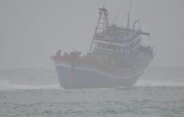 Cảnh báo gió mạnh, sóng lớn trên biển và mưa to ở miền Trung