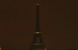 Nhiều quốc gia tắt đèn hưởng ứng Giờ Trái đất 2016