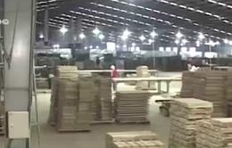Quảng Trị: Hàng nghìn lao động có việc làm nhờ công nghiệp chế biến gỗ
